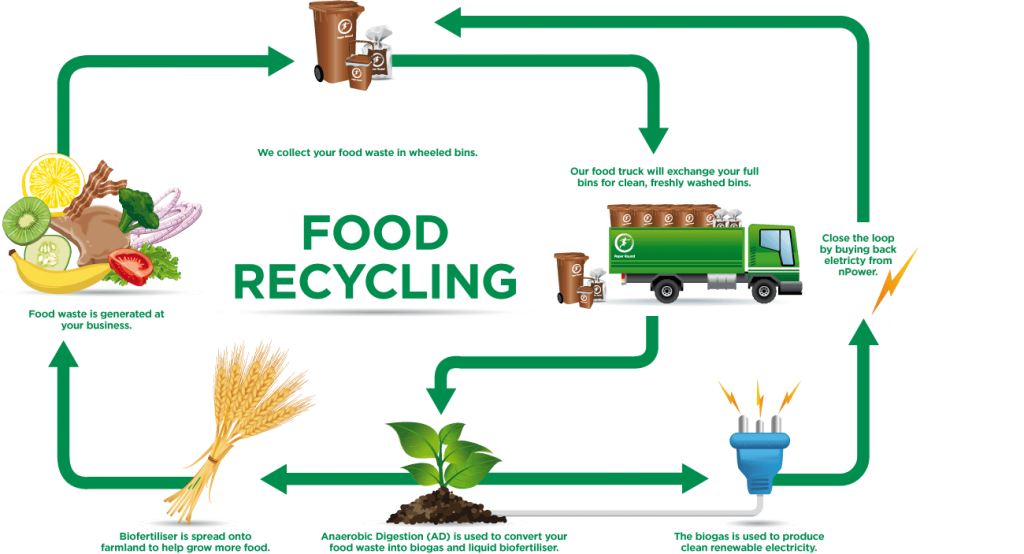 Recycling Your Food Waste
